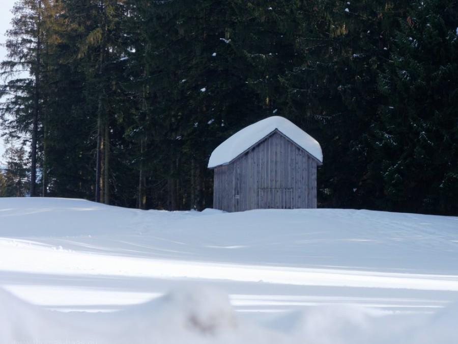 Verschneiter Stadl auf dem Pfänder, Februar 2019