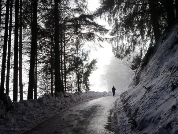 Auf dem Weg zur Bergstation, Pfänder, 2019