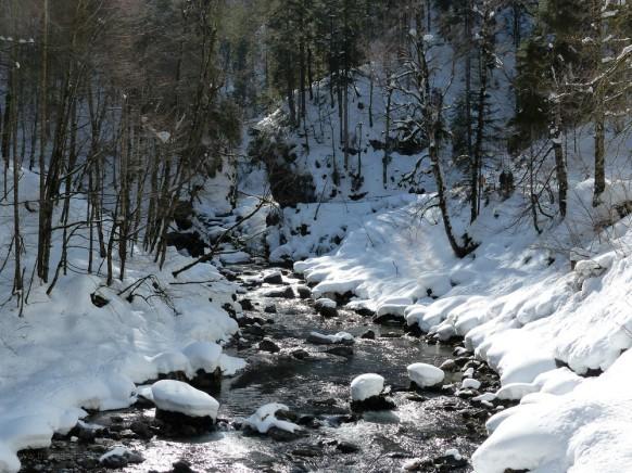 Wintertraum an der Breitach, Februar 2019