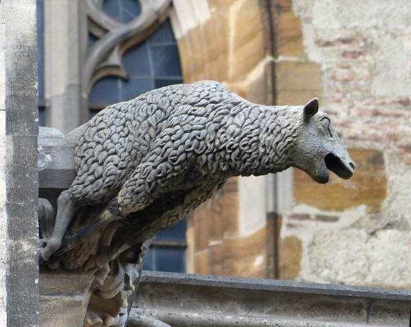 Münster, südl. Münsterplat, Schaf oder Lamm, 2019