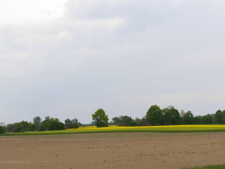 Landschaft im Mai 2019