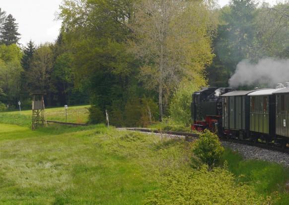 Die Lok rückwärts voraus auf dem WEg nach Ochsenhausen, Mai 2019