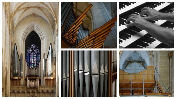 Orgelführung, Ulm, September 2016
