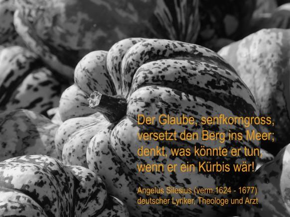 Kürbis-Motiv mit Zitat von Angelus Silesius...