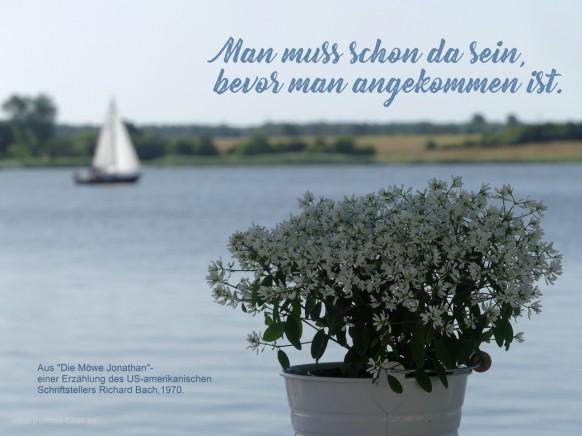 Blick über die Schlei, Arnis, 2021