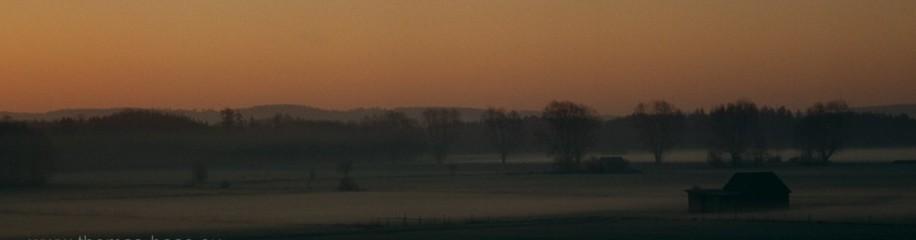 Nebel ueber Feldern
