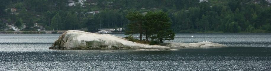 Norwegischer See