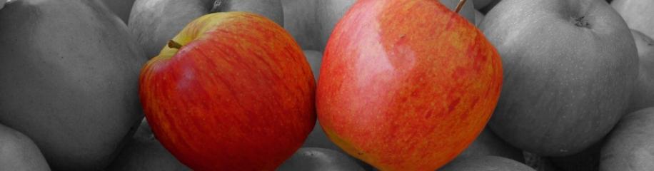 Color Key, Äpfel